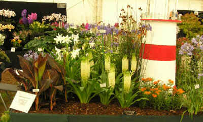 Chris Cooke Plants Silver Gilt Medal Winning Display at Tatton 2009